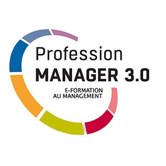 Profession Manager 3
